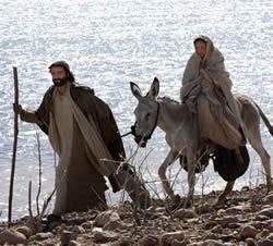 Christmas Mary Donkey